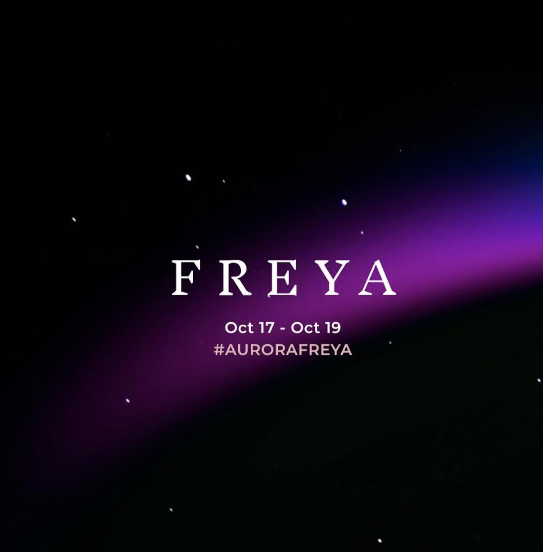 """Freya(弗雷亚)""是北欧神话中,爱、美丽和生育的女神。    Visit Arctic Europe 官网 图"