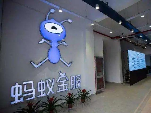 上交所:暂缓蚂蚁集团科创板上市,涉嫌重大信披违规