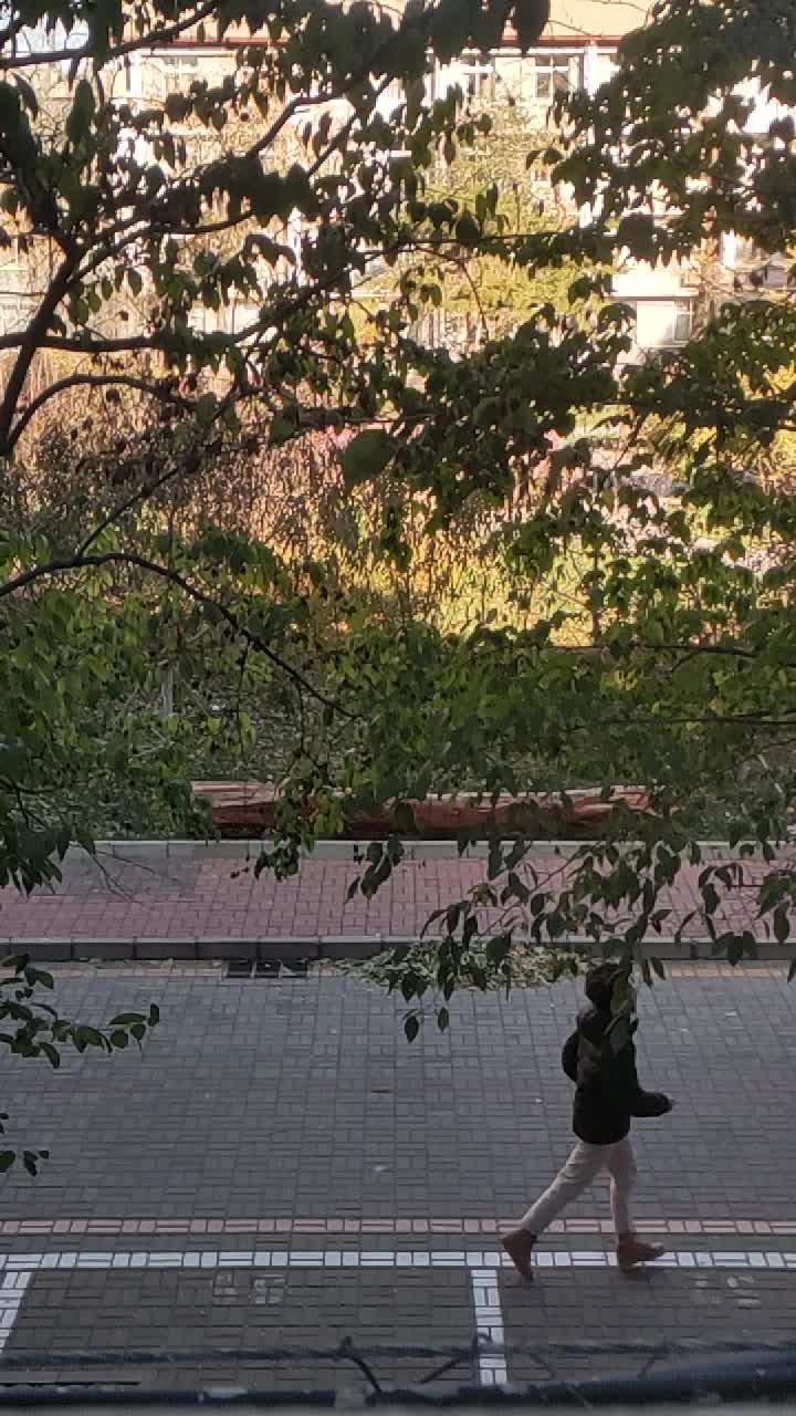 56 北京师范大学 影像史学专业 徐明宇
