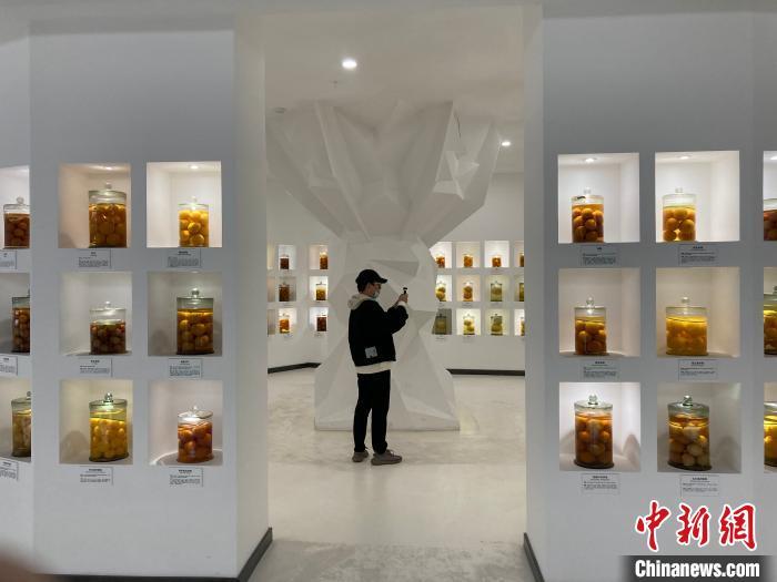 重庆忠县建成中国首个柑橘资源储备园及科普教育基地