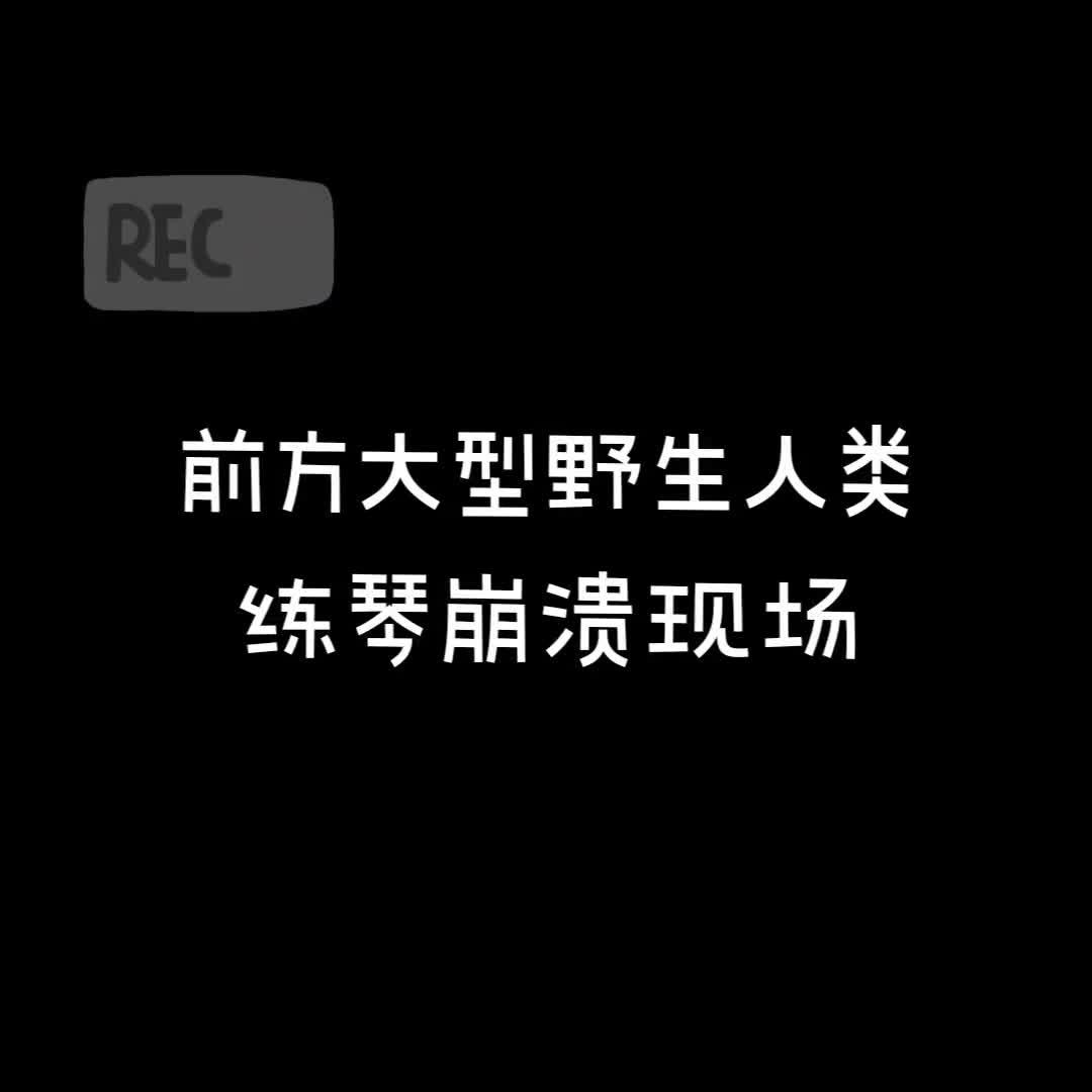 88 北京师范大学 音乐学 骆书蔷
