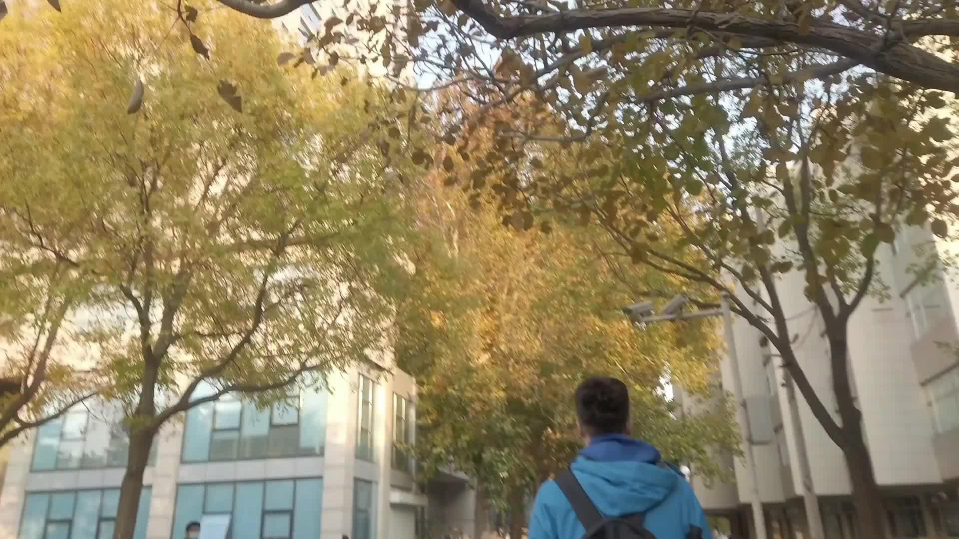 58 北京师范大学 数学科学学院数学与应用数学 史森元