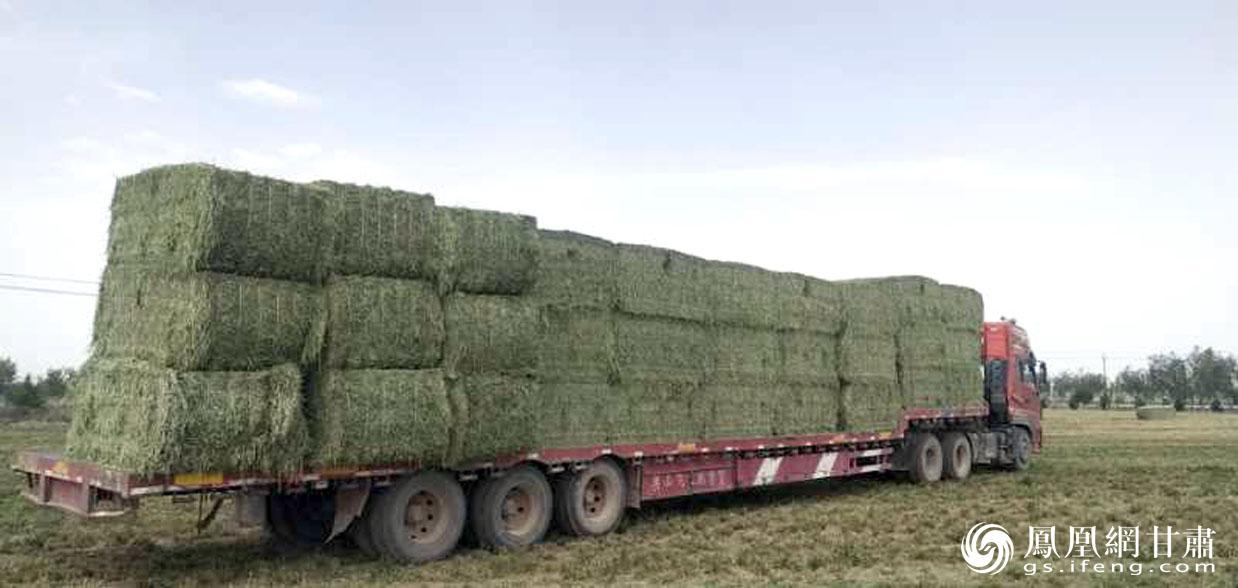 张掖市推出大型农机租赁服务,不断提高农业机械化水平。甘肃省供销联社供图