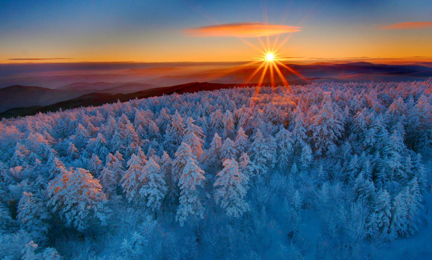 带岭大箐山雪凇