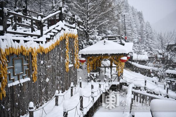 一次换乘进雪乡。