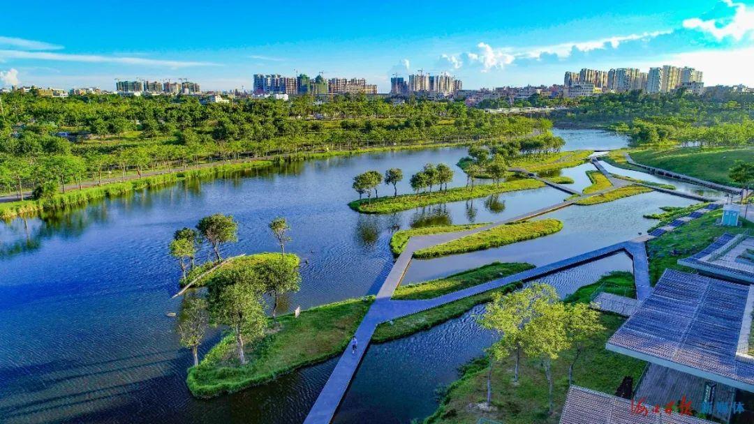 航拍海口美舍河凤翔湿地公园,绿意盎然的小岛在河中央罗列有序。海口日报记者 王程龙 摄