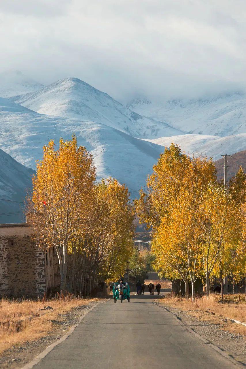 △山南贡嘎县乡村小道 ©图虫:西藏有毒
