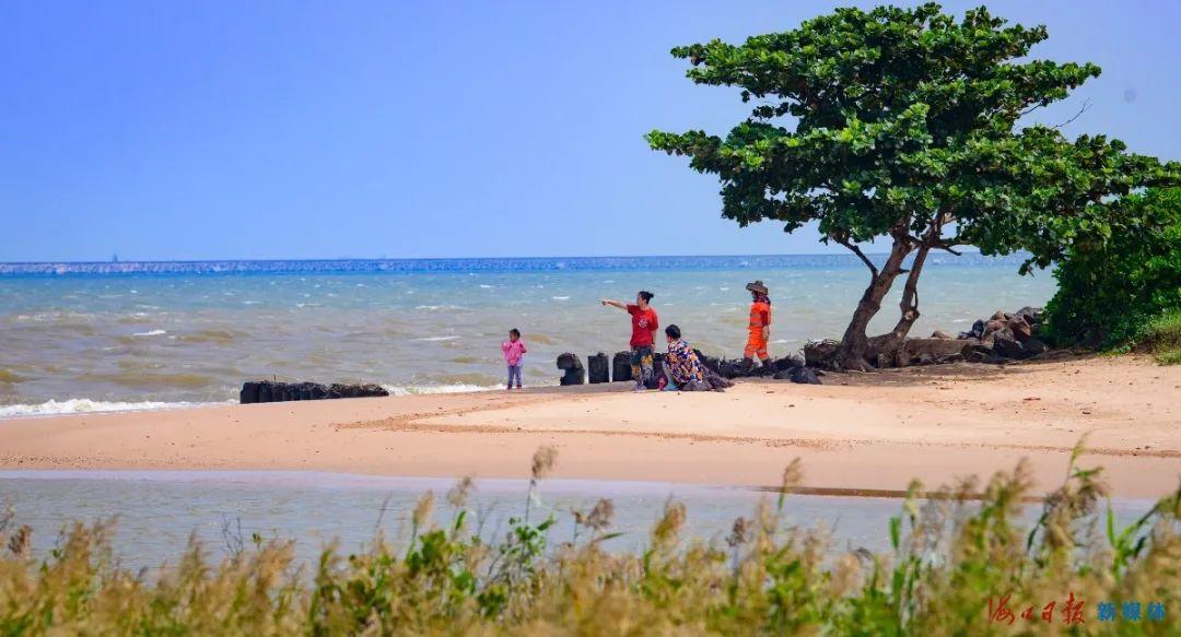 市民游客在海口五源河国家湿地公园游玩。海口日报记者 陈长宇 摄