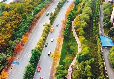 5G+人工智能 西安品质交通慢行系统正在建成