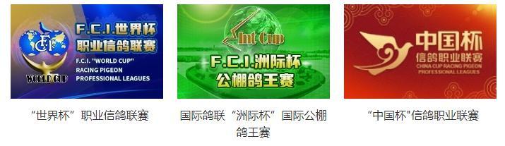 ↑中国信鸽协会官网展示的部分特比环比赛 图据中国信鸽协会官网