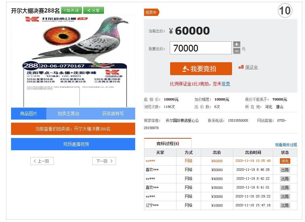 ↑中信网爱鸽商城中正在拍卖的鸽子 图据中信网
