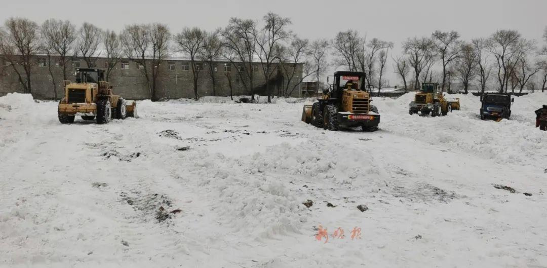 南岗区临时雪场紧急开放 保障快速清运冰雪。李龙 刘达齐 摄