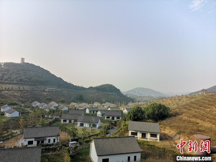 2019年浙江县域农产品网络零售额达819亿元
