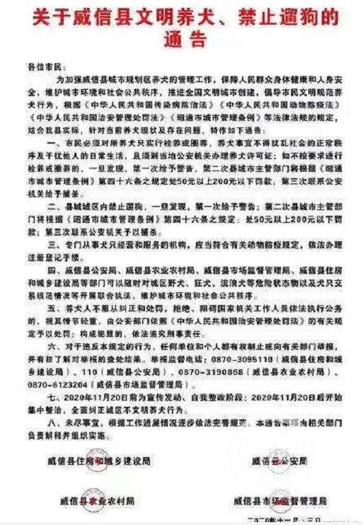 """【彩乐园1app下载】_云南威信""""禁遛狗新政""""已暂停执行 养狗民众呼吁依法管理"""