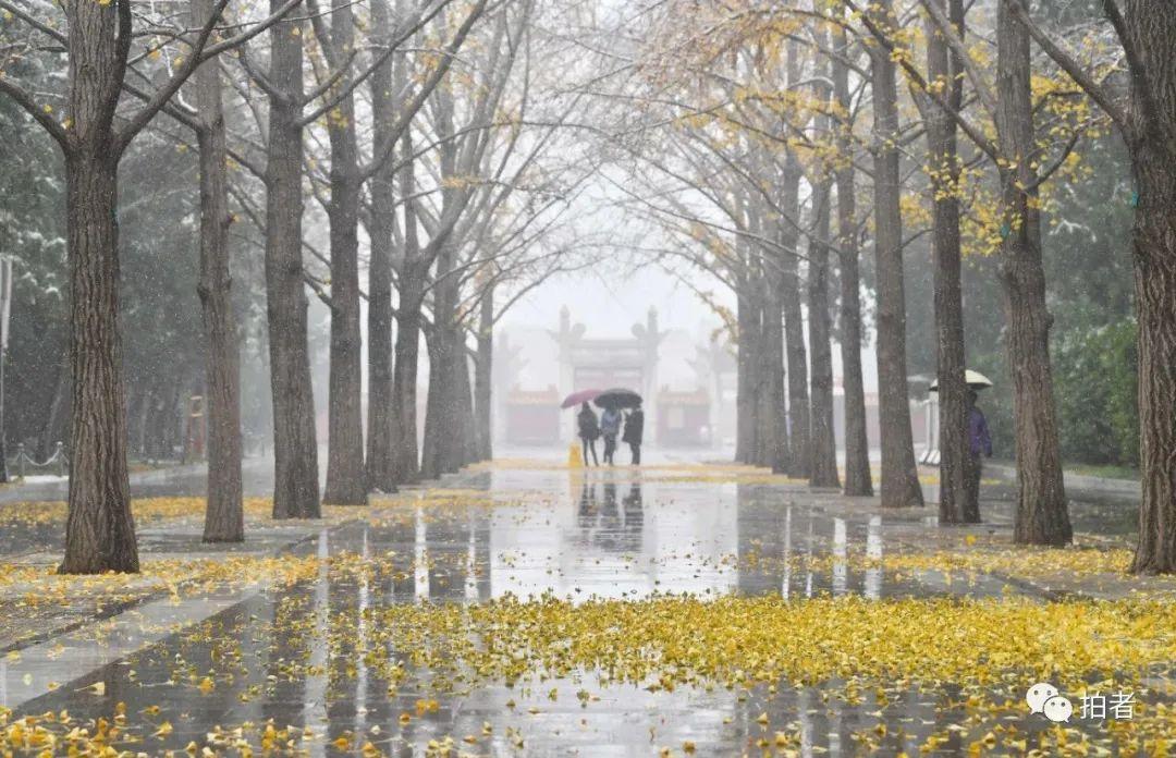 雪一来,北京这些地方就更有味道了 最新热点 第9张