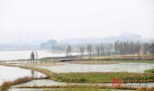打造国家级湿地公园 九江芳兰湖生态公园项目进入扫尾阶段