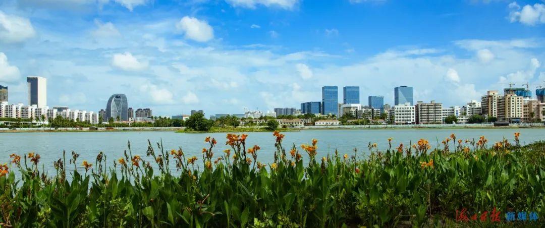 海口红城湖公园,碧蓝的天空、青蓝色的湖水、岸边郁郁葱葱的水生植物,共同构成了一幅优美画卷。海口日报记者 陈长宇 摄