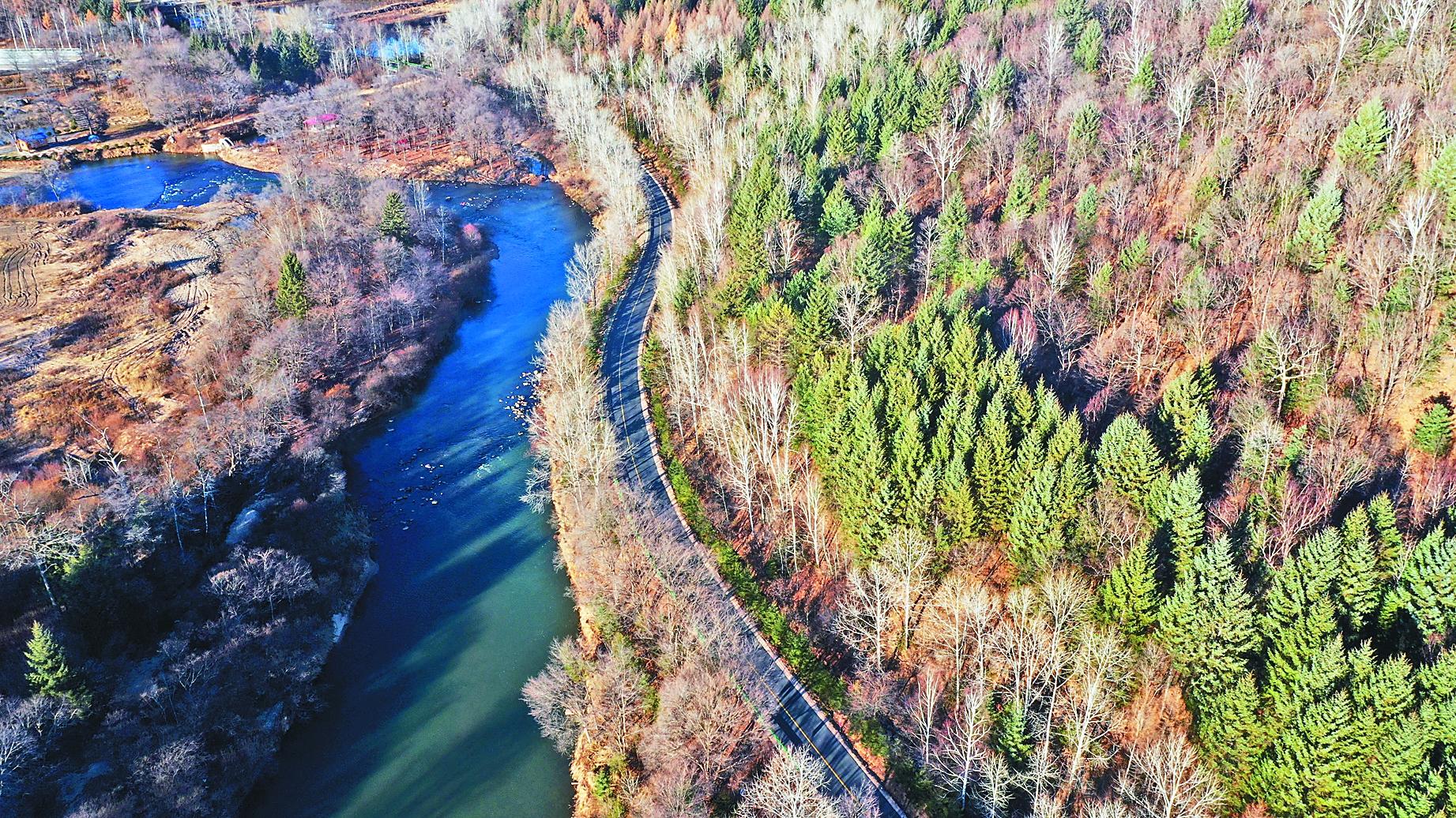 我省林区产业路旅游路规划1600公里 占全国39%