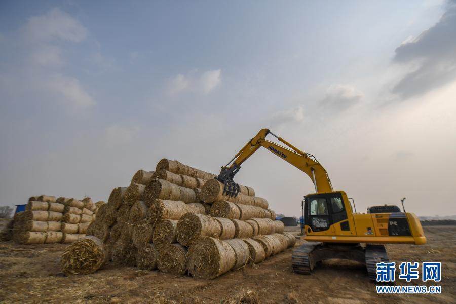 11月5日,在吉林省松原市宁江区善友镇团结村,农民搬运打包好的秸秆。新华社记者 张楠 摄