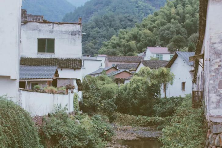 被稻田染成金色的俞源里,藏着古村慢生活
