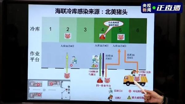 天津新冠肺炎感染源查明:是北美猪头!