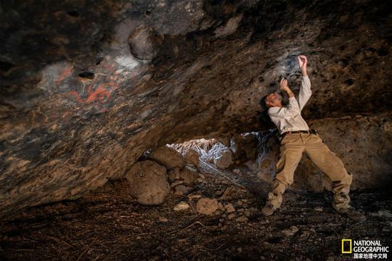 在南加州的风车洞(Pinwheel Cave),研究团队成员Jon Picciuolo发现了几个世纪前塞入洞穴墙壁裂缝中的咀嚼物(咀嚼过的植物)。洞穴的名字来自右侧的彩色风车。 摄影:DEVLIN GANDY