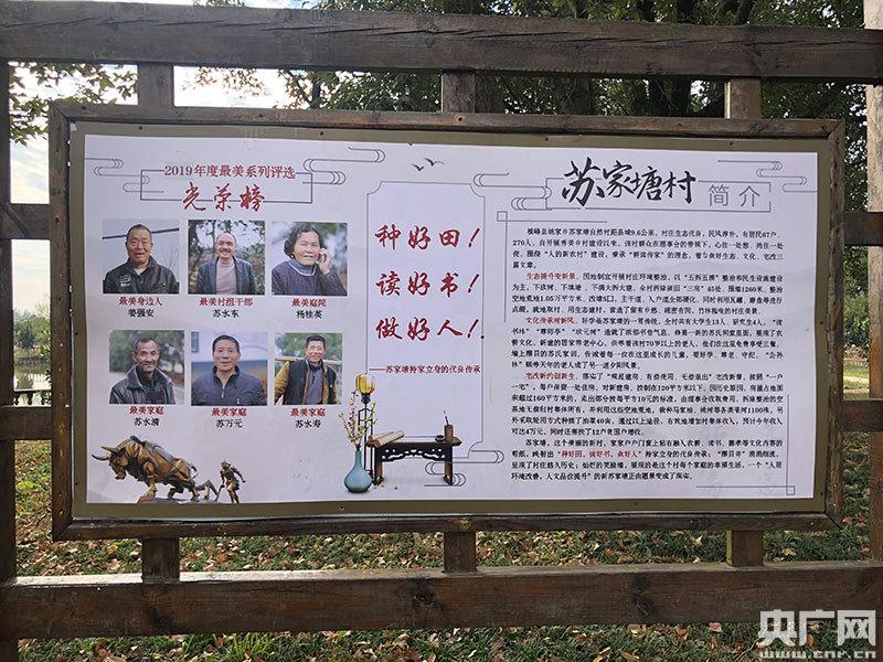 苏家塘村2019年最美系列评选光荣榜展示栏(央广网记者 胡斐 摄)