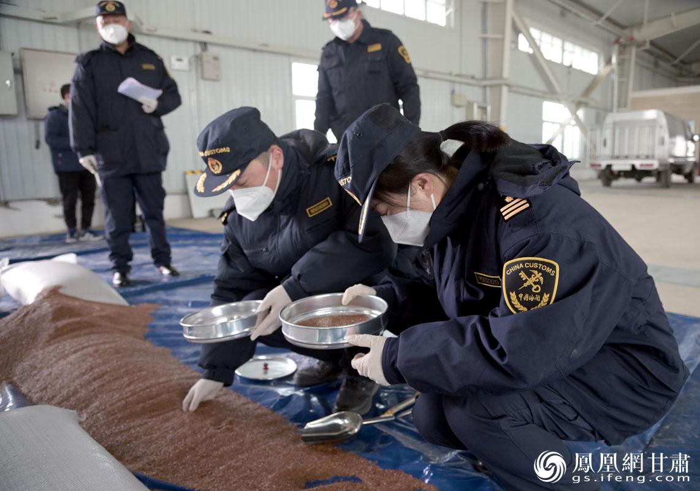 兰州海关工作人员对进口麻籽开展现场查验、检疫初筛 肖刚 摄