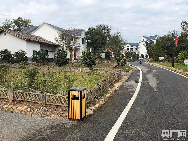 干净整洁的乡村道路(央广网记者 胡斐 摄)