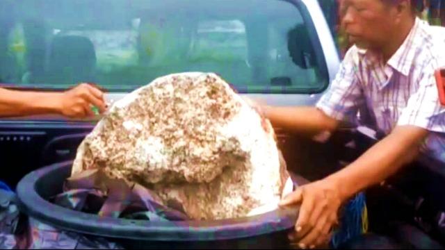 渔民捡到鲸鱼呕吐物 仔细一看价值两千万!