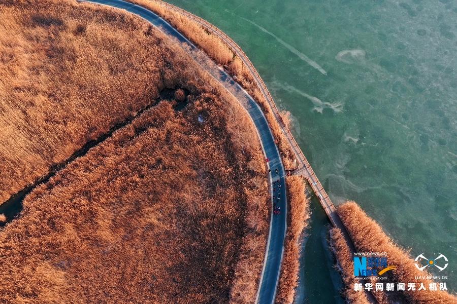 这是11月29日拍摄的甘肃省张掖国家湿地公园风光。进入冬季,甘肃省张掖国家湿地公园湖水结冰,苇荡满目金黄,空气清新冷冽,市民们穿梭其中,乐享周末时光。新华网发(杨永伟 摄)