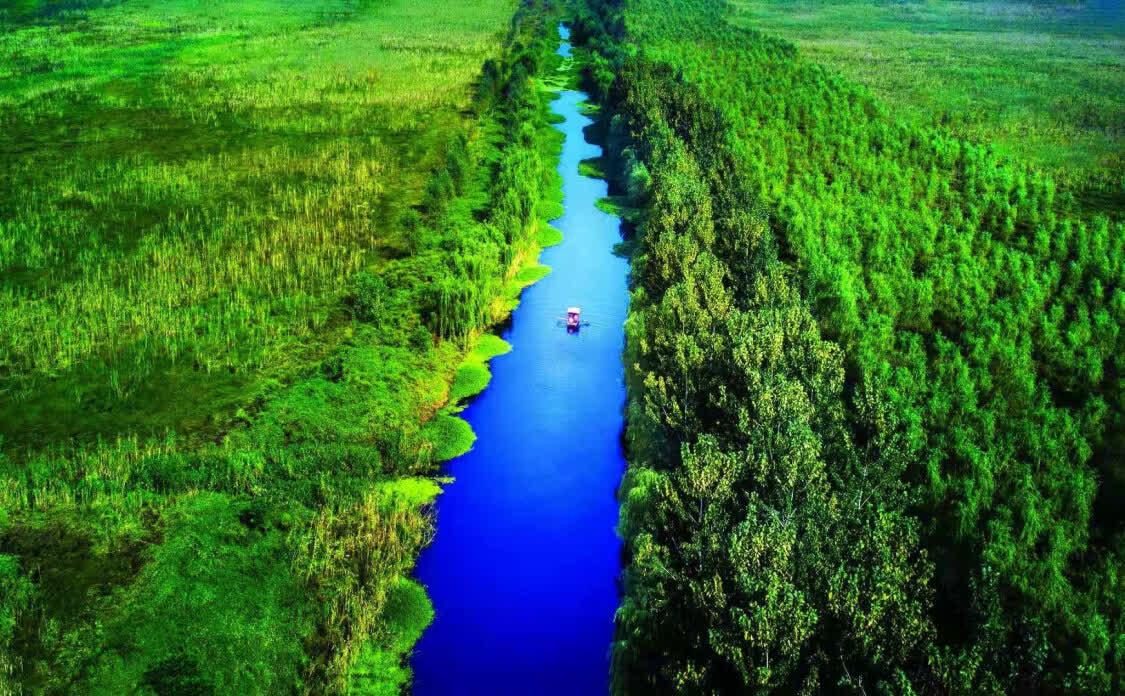 蚌埠三叉河湿地生态景观