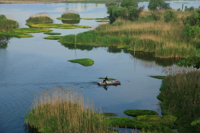 五河沱湖生态环境景观