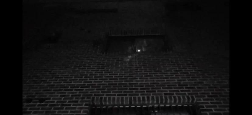 【我的中国节】_素媛案罪犯打手电筒观察抗议者 黑暗中盯了1分钟