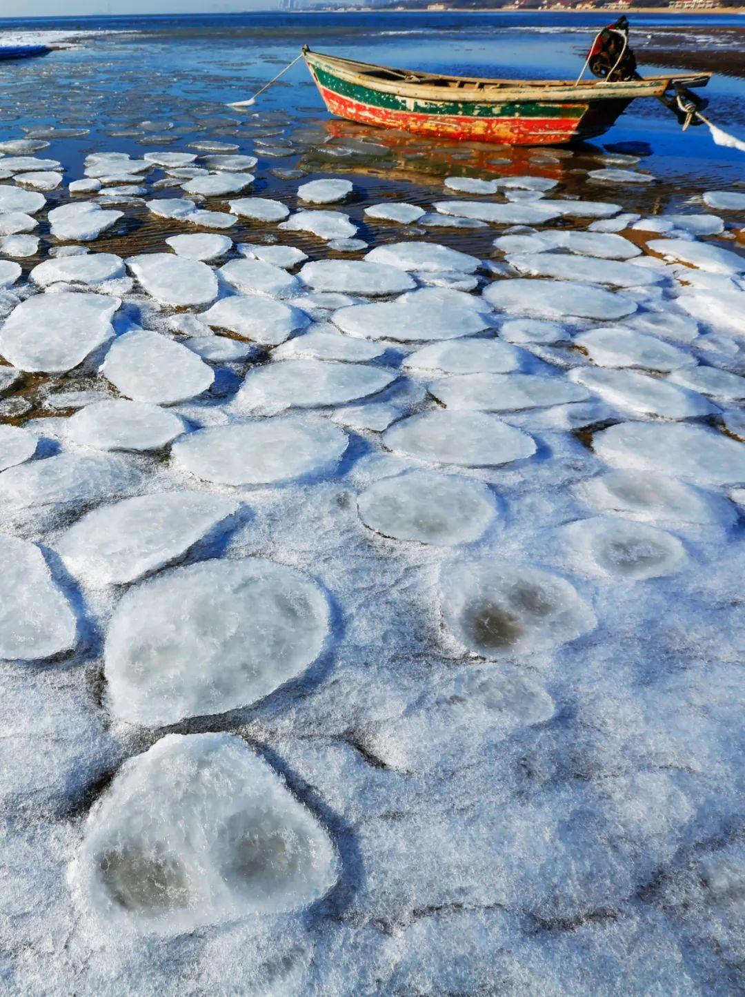 ▲ 冬季,渤海上出现的莲叶状的海冰 。摄影/邱会宁