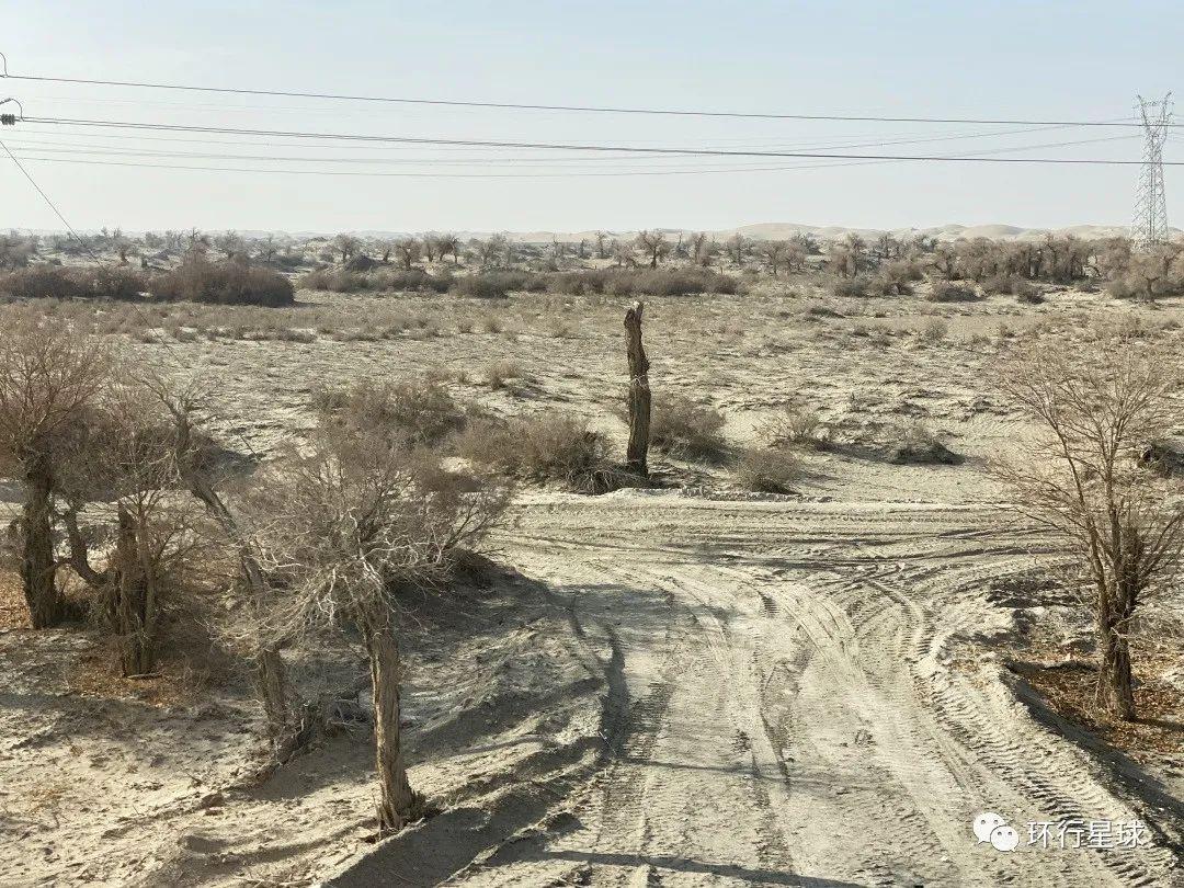 沿线环境开始恶化