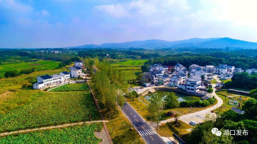 农兴村美仓廪实——湖口县高质量实施乡村振兴战略