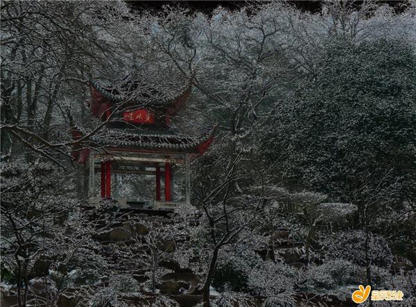 (爱晚雪景,摄影:赤一。以上图片均来自星辰影像)