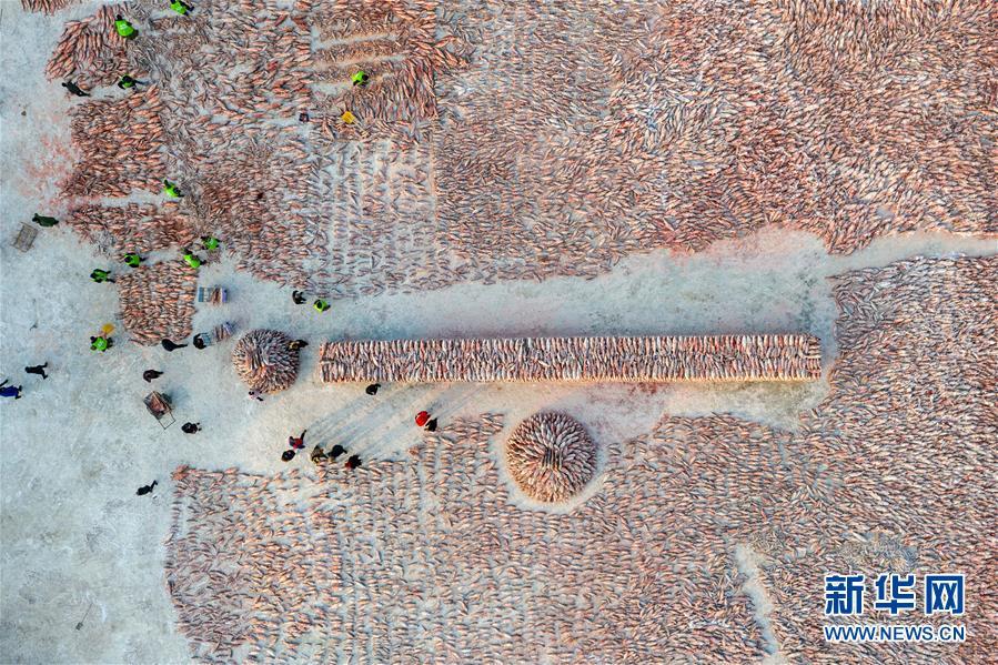 12月27日,在查干湖渔场超市,消费者选购查干湖鱼(无人机拍摄)。新华社记者 张楠 摄