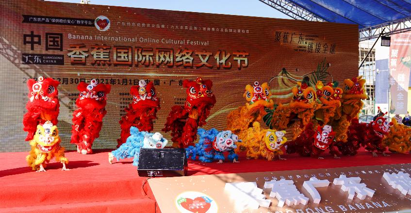 活动在精彩的《雄狮起舞贺盛世》中盛大开幕。