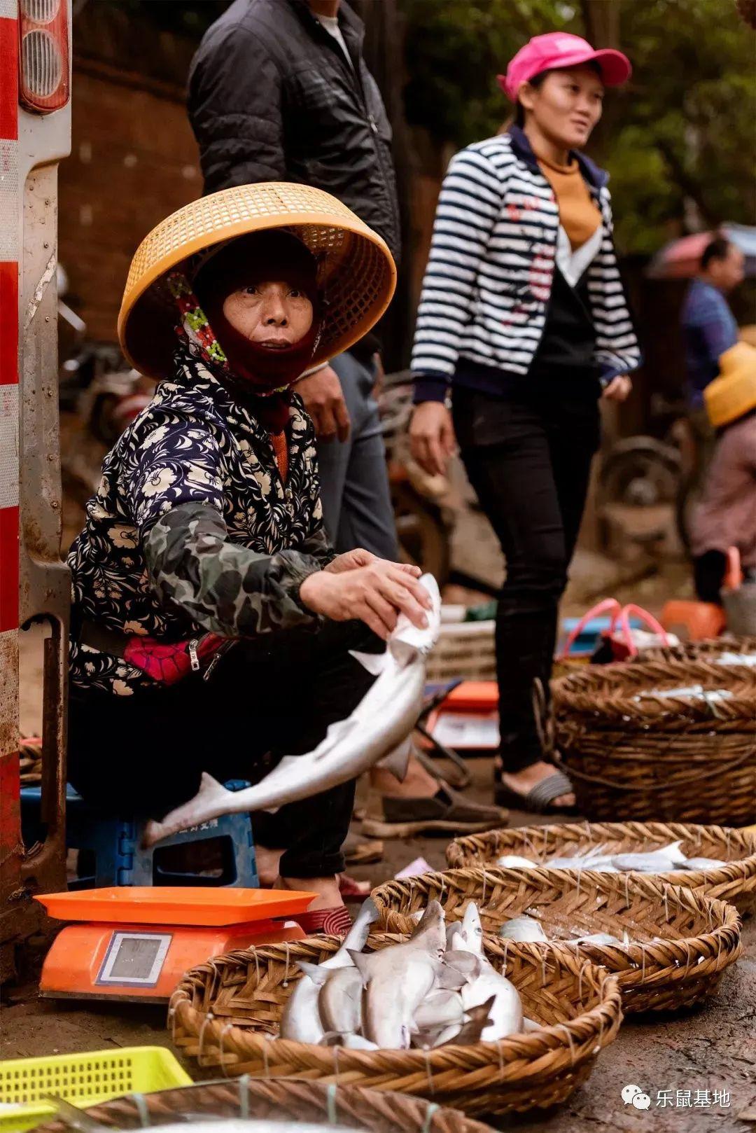 """湛江海产品闻名遐迩 被誉为""""海鲜之都"""""""