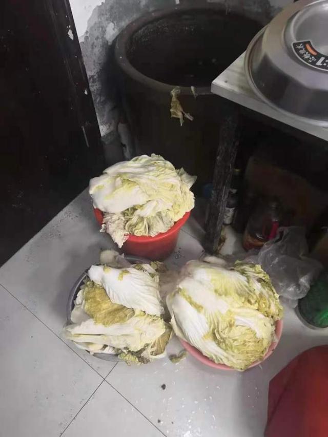 "【bch】_因""正好有人送了个缸"",吉林大妈偷600斤白菜做成酸菜"