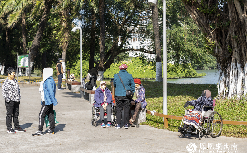 在公园享受惬意暖冬的老人
