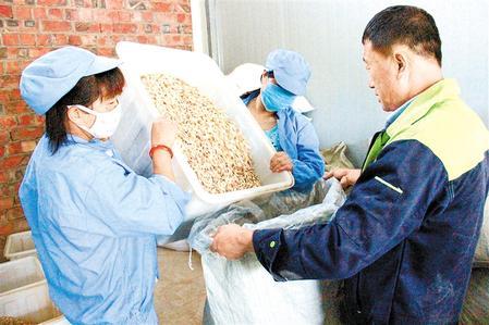 东西部扶贫协作使岷县中药材远销各地 岷县县委宣传部供图