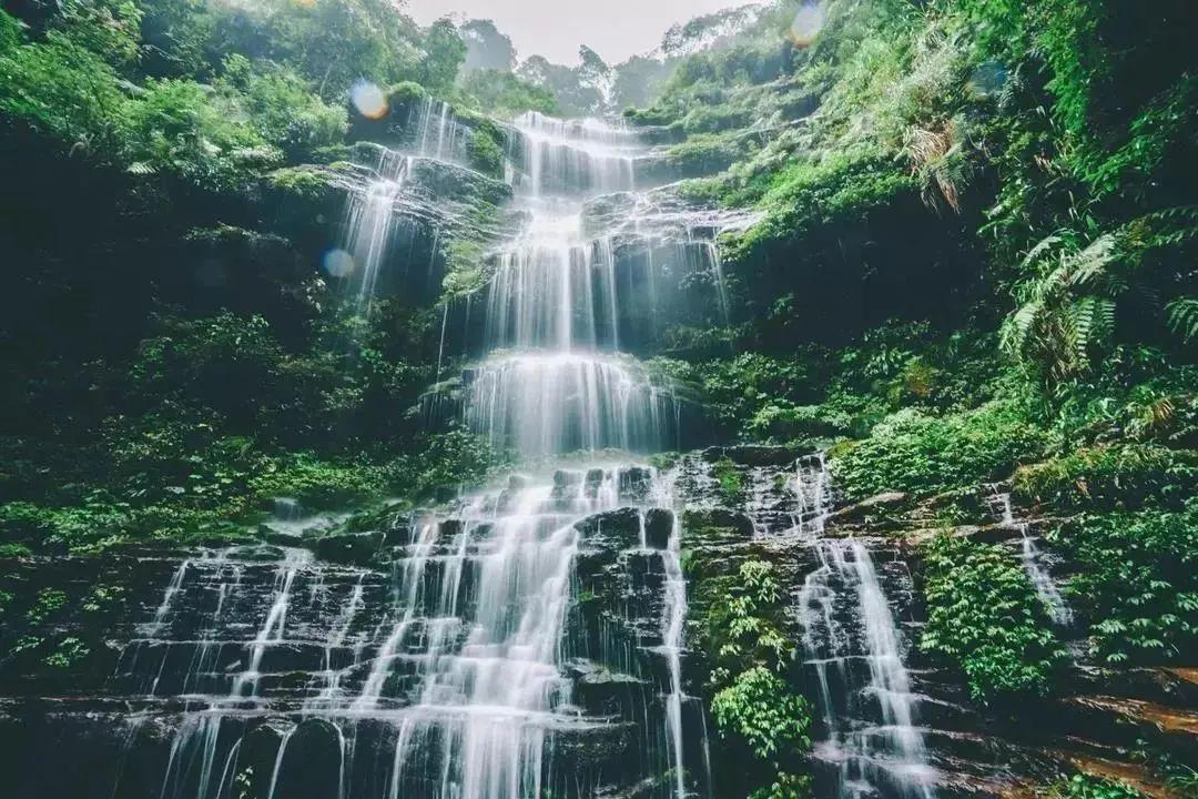 雅安碧峰峡景区