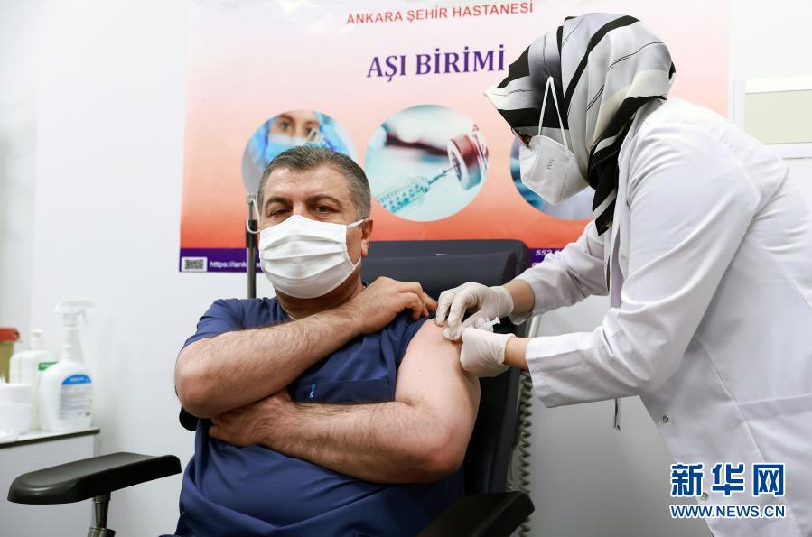 1月13日,土耳其卫生部长科贾(左)在安卡拉接种中国新冠疫苗。(新华社发)