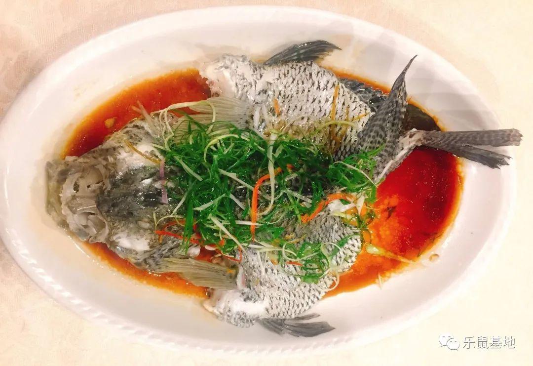 """如果你是个土豪,龙趸鱼要吃得格外讲究,才不算辜负你白花花的银子。广东本地人认为鱼皮、颈骨、鱼肠、鱼翅和鱼扣并称为""""龙趸五宝"""",别傻乎乎地光吃鱼肉啦!"""