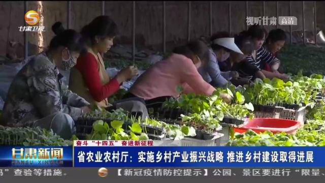"""""""十四五""""甘肃建百个省级现代化农业产业园"""