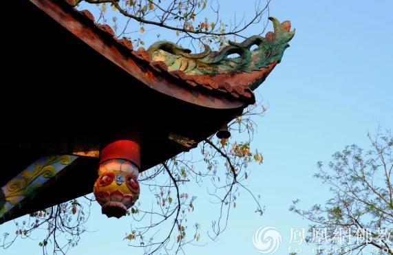 图片来源:凤凰网佛教 摄影:于椿根