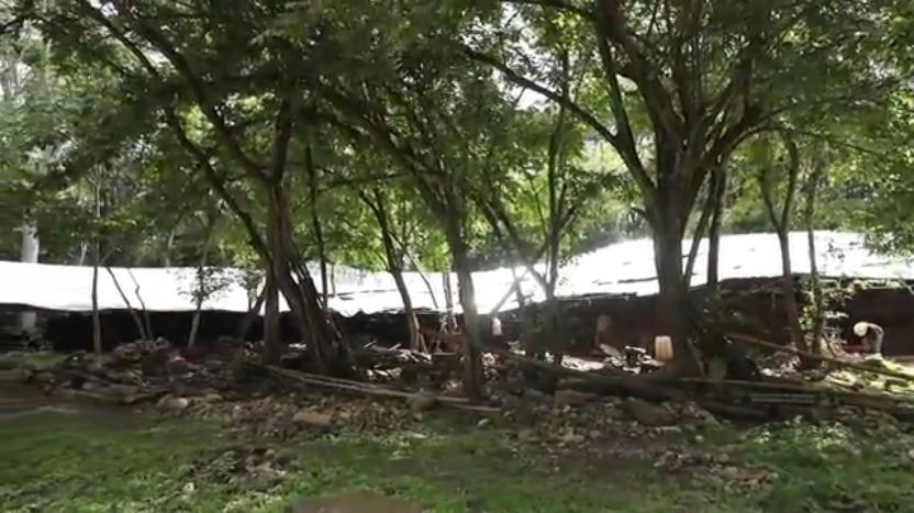 中国考古学家曾在洪都拉斯遭遇罢工游行,被堵在荒郊野外
